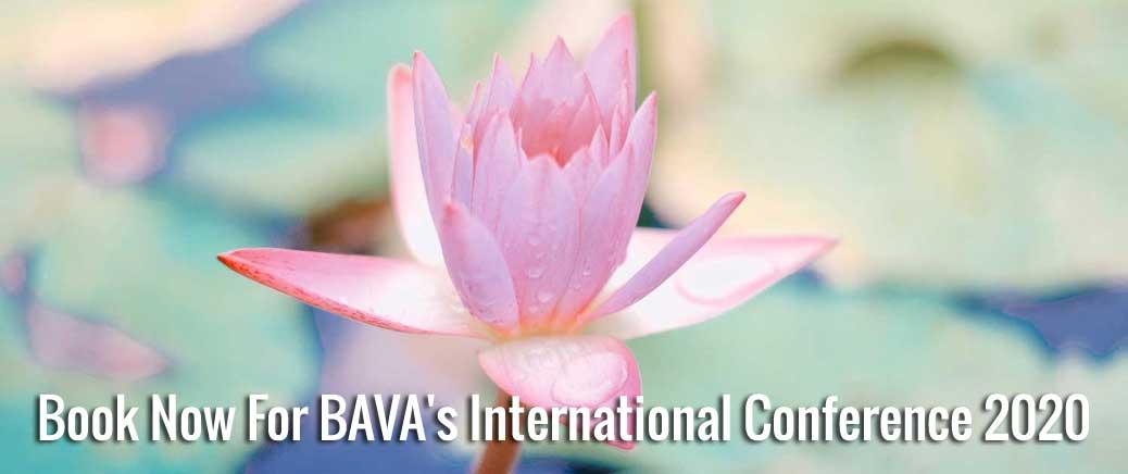 2020 bava conference